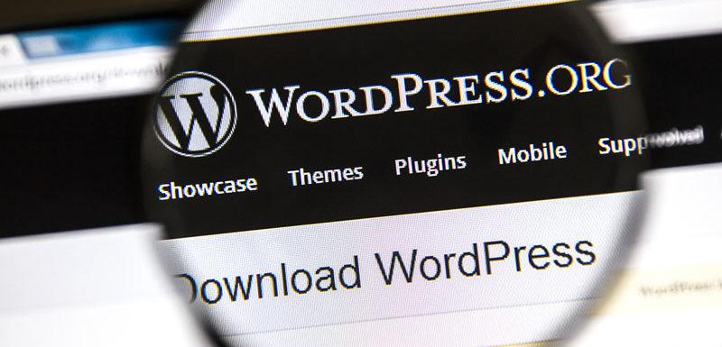5 pomôcok pre bezpečnejší WordPress